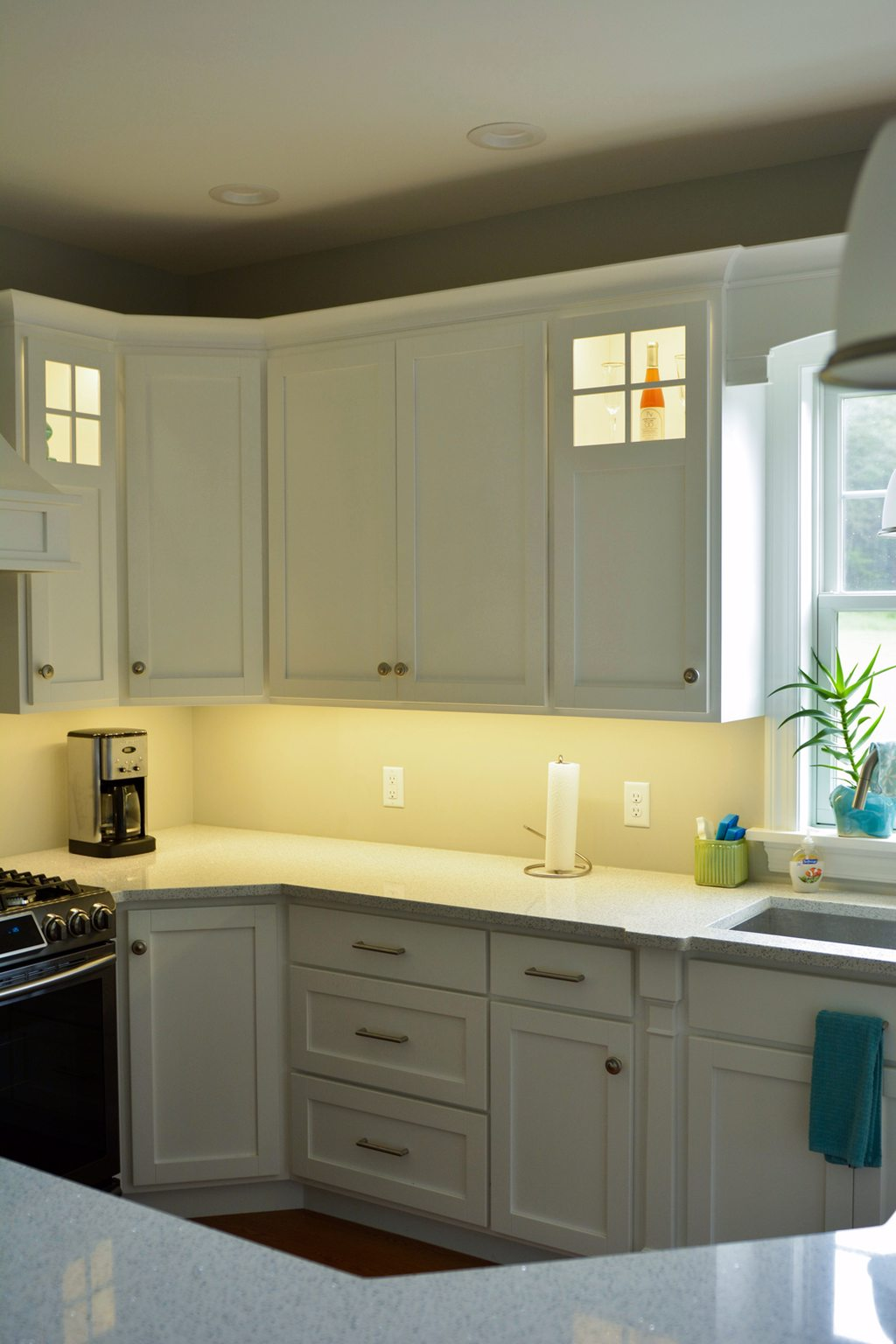 Remodeled Kitchen with Lighted Cabinetry and Glass Windowed Cabinets